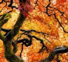 Japanese Maple at Portland's Japanese Gardens Sticker