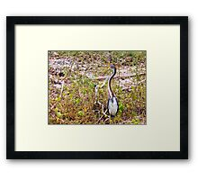 Pondering the Moment Artistic Photograph by Shannon Sears Framed Print