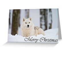 Arctic Wolf Christmas Card 2 Greeting Card