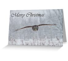 Great Gray Owl Christmas Card 2 Greeting Card