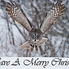 Great Gray Owl Christmas Card 3 by Michael Cummings
