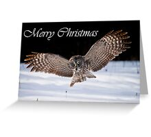 Great Gray Owl Christmas Card 7 Greeting Card