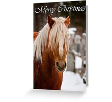 Horse Christmas Card 3 Greeting Card