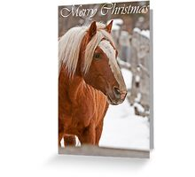 Horse Christmas Card 4 Greeting Card
