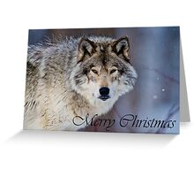 Timber Wolf Christmas Card 4 Greeting Card