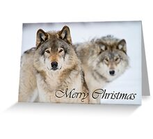 Timber Wolf Christmas Card 7 Greeting Card