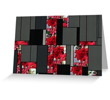 Mixed color Poinsettias 1 Art Rectangles 7 Greeting Card
