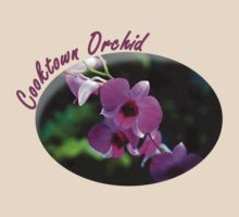 Cooktown Orchid by Just Aussie