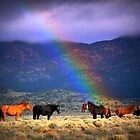Some Where Over The Rainbow by Jeanne  Nations