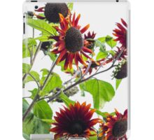 Multiple Red Sunflowers iPad Case/Skin
