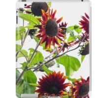 Multiple Red Sunflowers iPad Case/Skin
