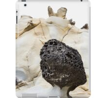 Large Morel Tafoni iPad Case/Skin