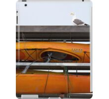 Seagull and Kayaks at A T and T Park San Francisco iPad Case/Skin