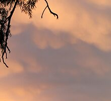 Pinky peach soft sunset clouds. by Neroli Wesley