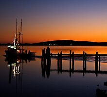 Bodega Harbor by Mike Stone