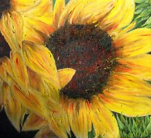Helianthus by Woodbine252