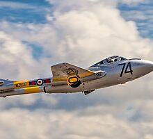 De Havilland Vampire T.11 WZ507 G-VTII by Colin Smedley