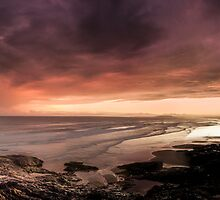 All the colors in Coffs by dan  stewart