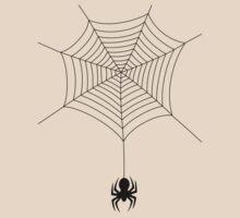Spider web by Stock Image Folio