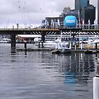 The Marina - Darling Harbour by Vicki Childs