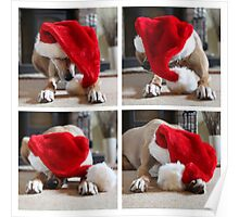 Funny Christmas Dog with Xmas Santa Hat Poster