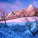 The Flatirons In Winter Blues And Pink by Gregory J Summers