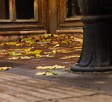 Autumn on the deck. by jhawa