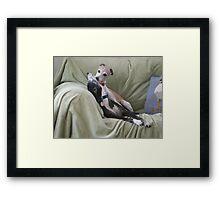 A Kiss from Winnie Framed Print