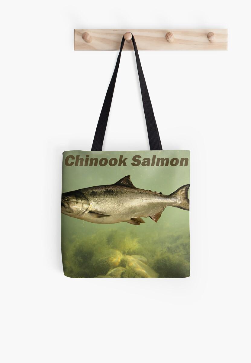 Chinook Salmon by Thomas Murphy