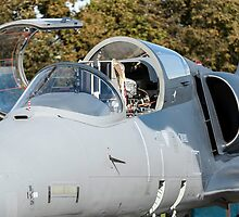 Fighter jet. by FER737NG