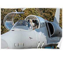 Fighter jet. Poster