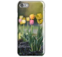 Summer tulips iPhone Case/Skin