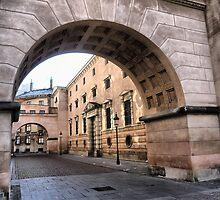 Copenhagen Wanderings (1) by Larry Lingard-Davis