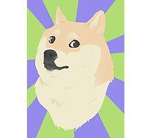 Doge - original Photographic Print