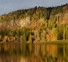 Reflected autumn hillside by Christian Filberg