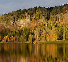 Reflected autumn hillside by Christian Filberg