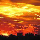 Painted skies over New York City  by Alberto  DeJesus
