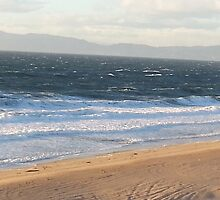 Windy Coast in Redondo Beach by Matthew Nickle
