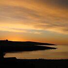 golden sunrise by delfinada
