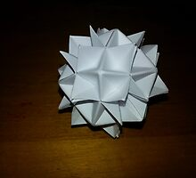 Origami Planetoid by Matthew Nickle
