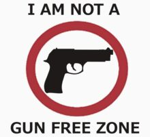 Not A Gun Free Zone by Katfellow
