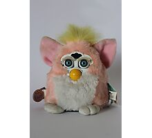 Pink Furby  Photographic Print