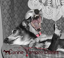 The Canine Vampire Diaries by CWCards2013