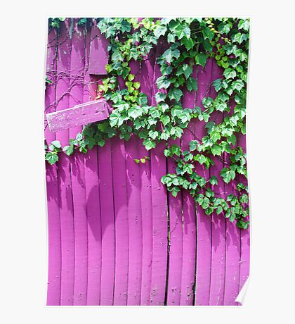 Pink Fence and Foliage Poster