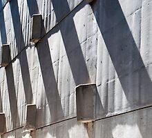 Shadow Play by Gary Chapple