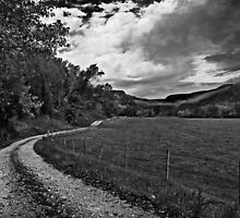 The Long Road Home by Lisa G. Putman