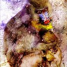 BABOON MOTHER AND BABY by Tammera