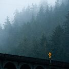 On the road by SandrineBoutry