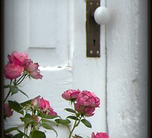 Garden Door by snuggie2u