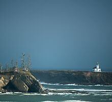 Cape Arago by SandrineBoutry